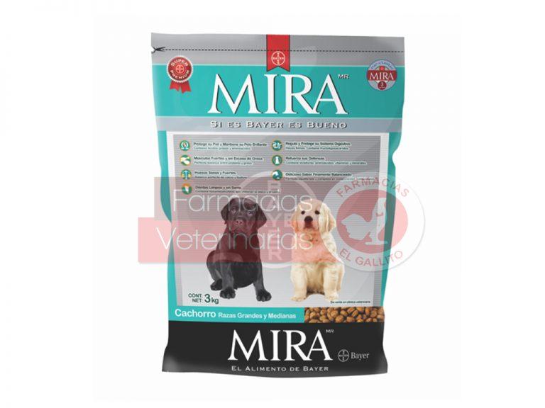 MIRA-CACHORR-RZAGDE_MED3-KG