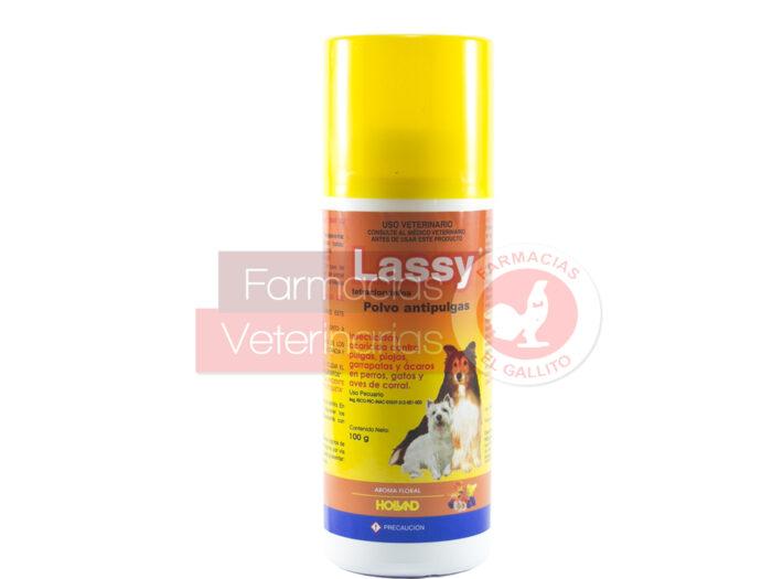 Lassy Polvo